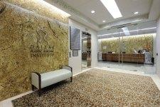 DPSI lobby